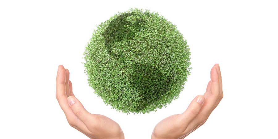 What Does It Mean To Offer Green Cleaning Services A1